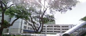 Taonan school