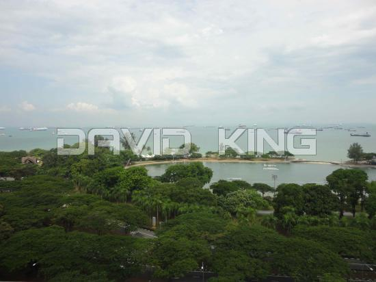 Breathtaking seaview apartment in Marine Parade for sale